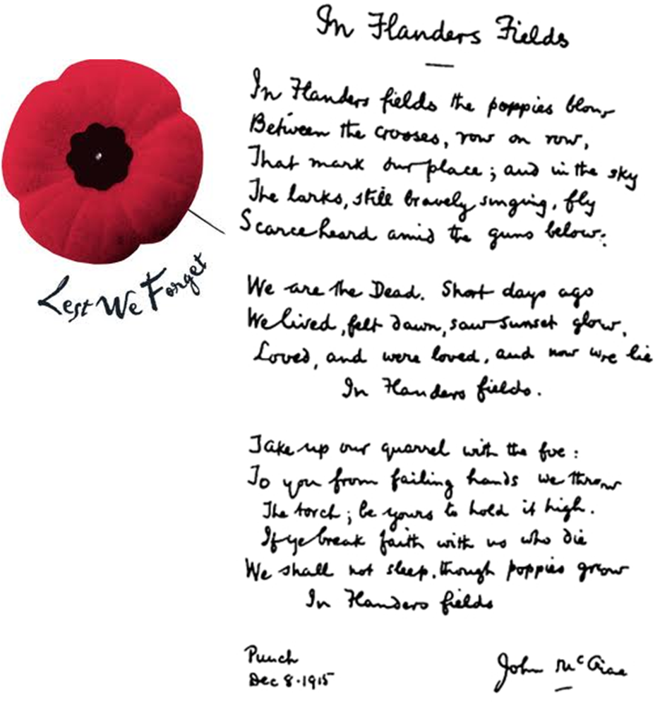 In Flanders Field Lest We Forget...